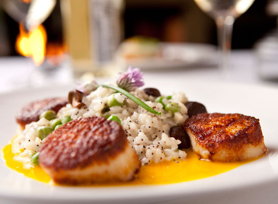 Scallop and Risotto - Haven Restaurant