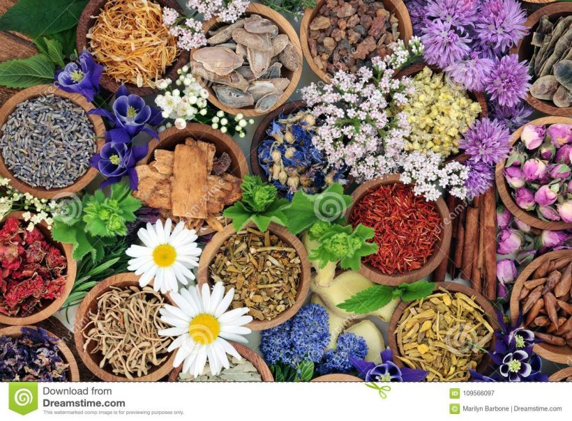 herbal medicine herbs flowers herbal medicine herbs flowers used chinese natural alternative remedies 109566097 820x604 - How to Avoid Acquiring Liver Diseases