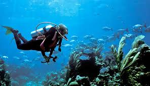 download 1 - Competitive Underwater Activities In Malaysia.
