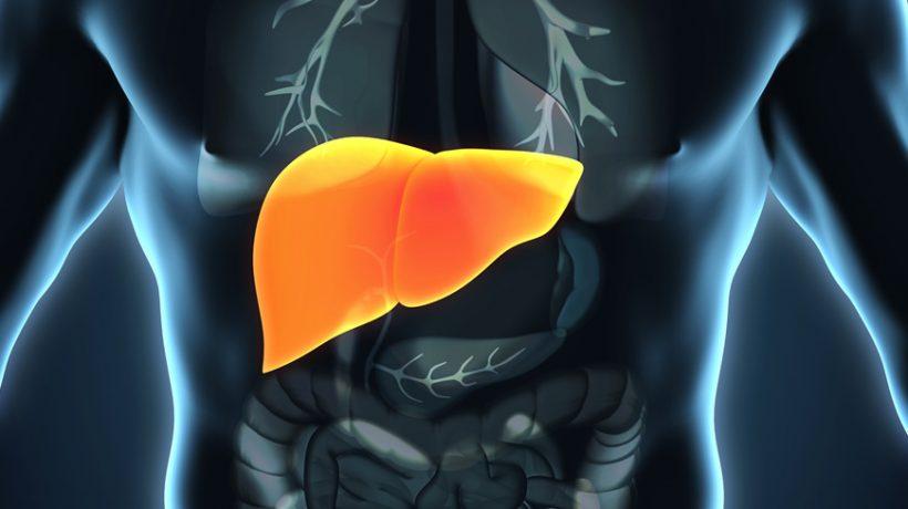 medicine for fatty liver in malaysia
